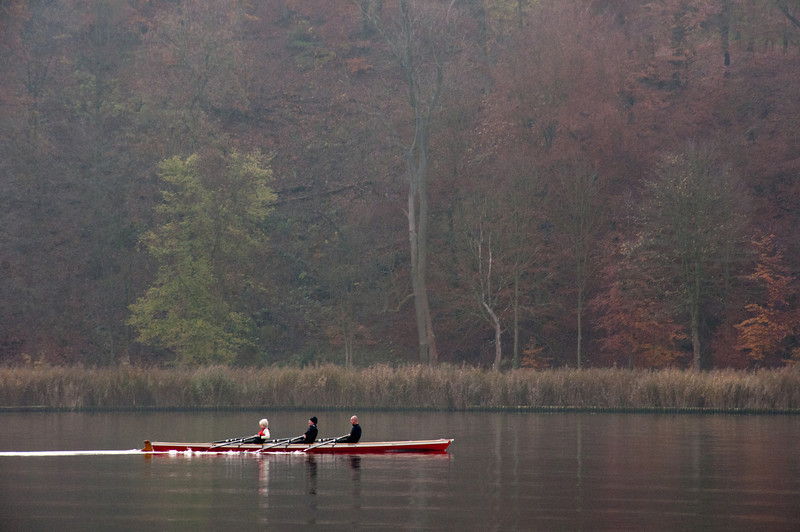 Rowers cruising over Lake Schwielowsee in Potsdam, Germany
