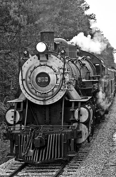 Train in Piney Woods.jpg