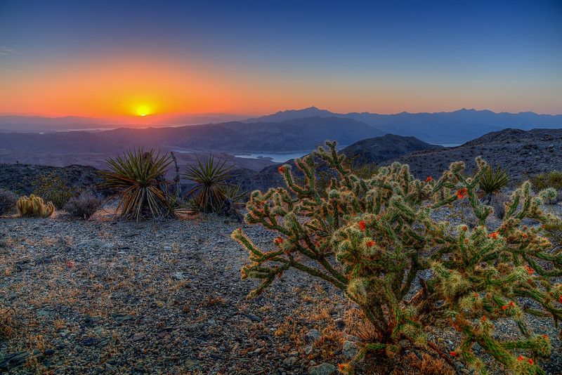 Overlooking Lake Mead from Meadview, Arizona