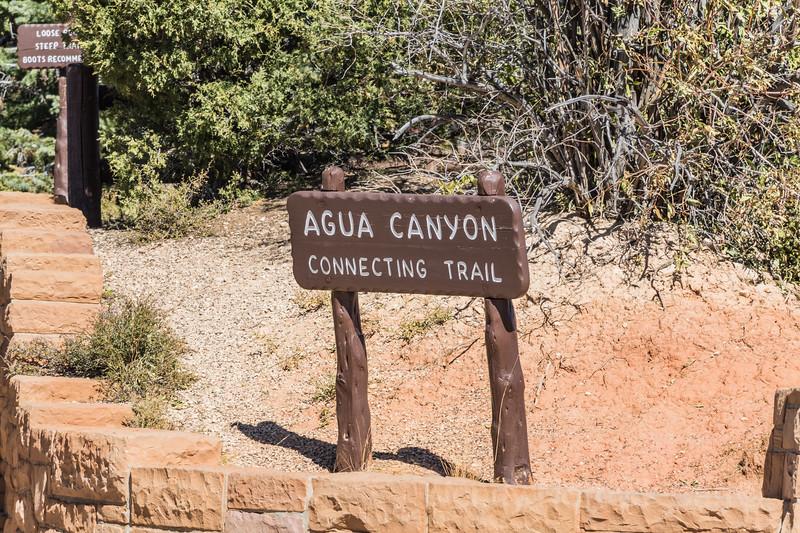 Black Birch Canyon -  Bryce Canyon National Park