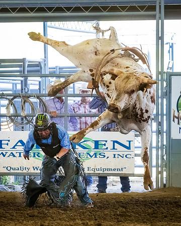 2019 NHW Bull Riding