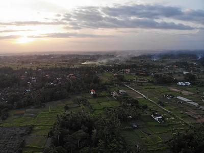 2019 - Indonesia - Bali - Ubud