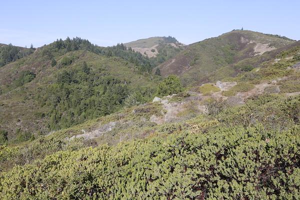 Ecology Field Trip#3 Carson Ridge Fairfax