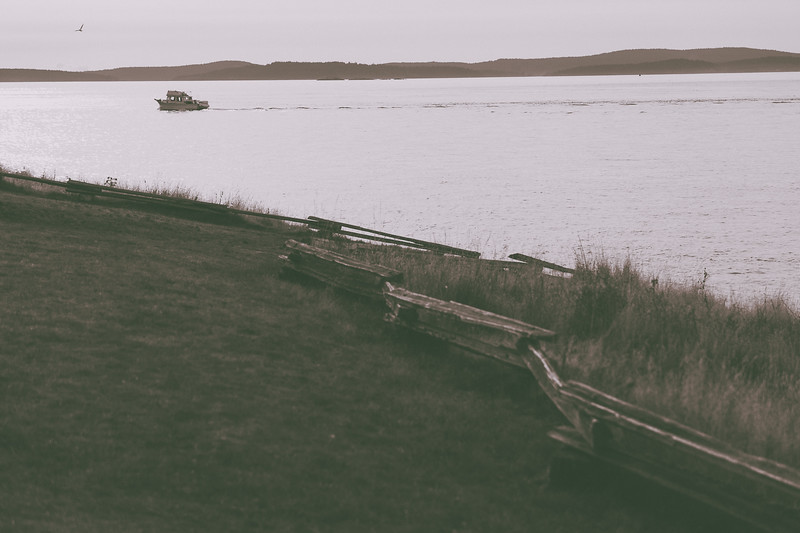 A boat and a seagull heading south. Seen from Washington Park, Anacortes, Washington.