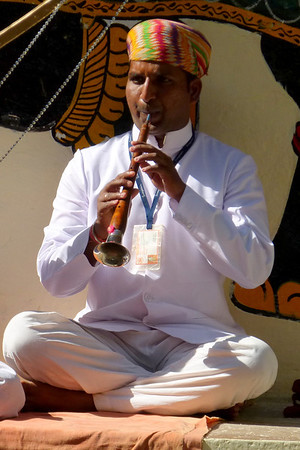 India 2013 smaller