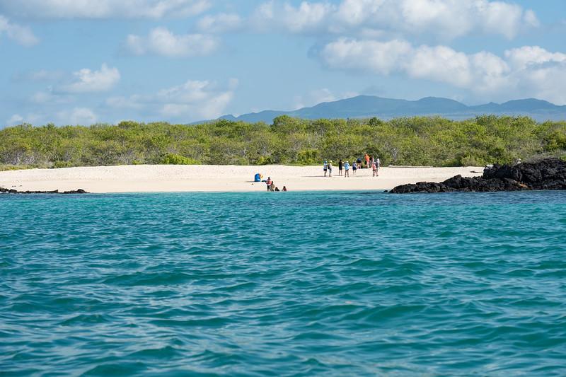 Galapagos-2629.jpg