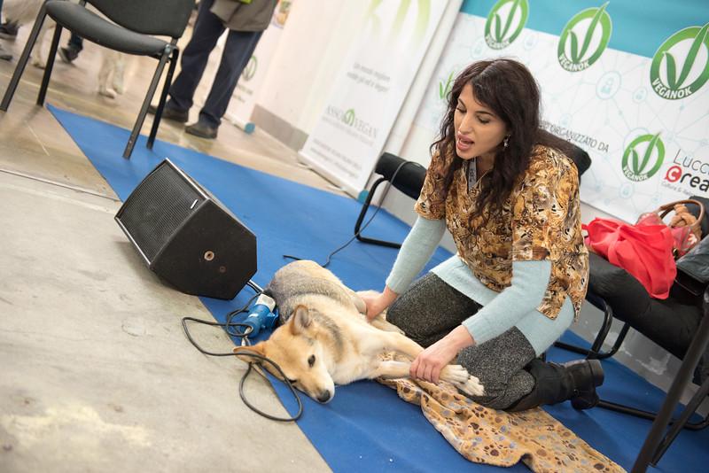 lucca-veganfest-conferenze-e-piazzetta_3_008.jpg