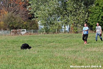 Quinebaug Fall Trial 2014