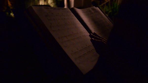 Amanda's Serenade