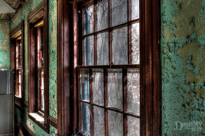 Vined Windows at an Abandoned Asylum