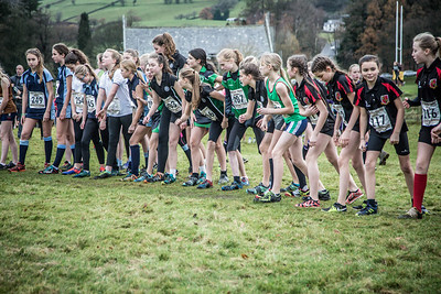South Lakeland Cross Country