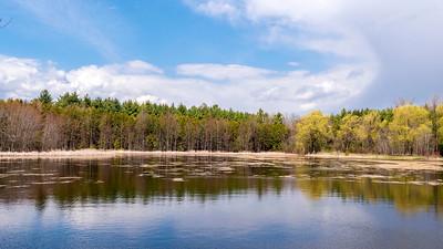 Robert Edmondson Conservation Area 2021
