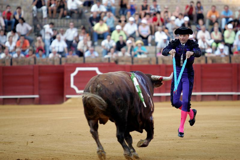 Banderillero in action. Bullfight at Real Maestranza bullring, Seville, Spain, 15 August 2006.