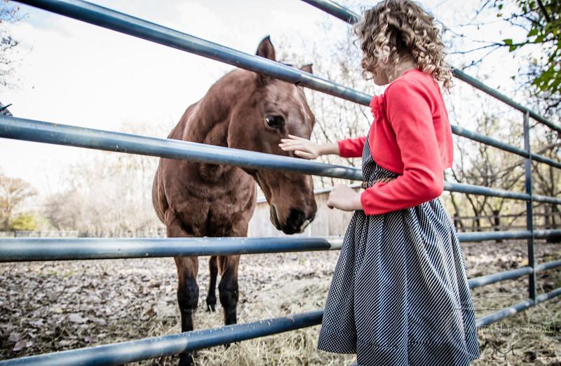 Taryn'14 - farm-12.jpg