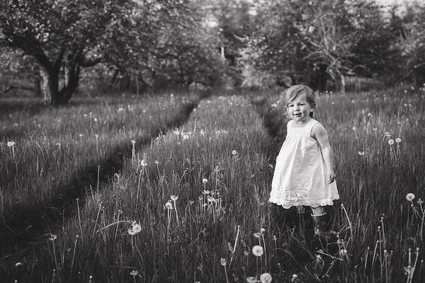 Maine Family Photographer - Week 22/52
