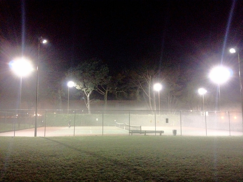 Foggy season is here