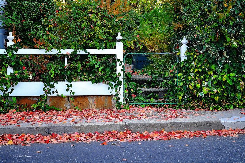 autumn gate 10-19-2012.jpg