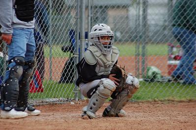 2010 Baseball Favorites