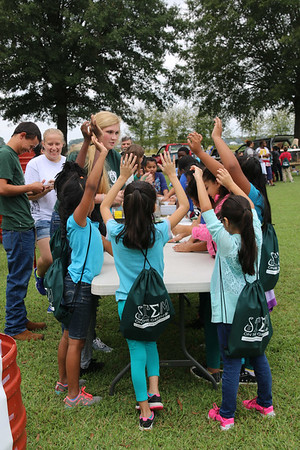 STEM on the Green 2016