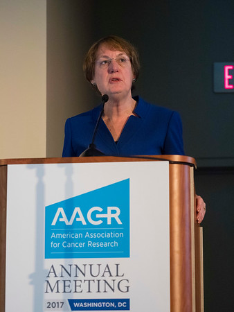 AACR 2017 Internal Chemistry in Cancer Research (CICR)