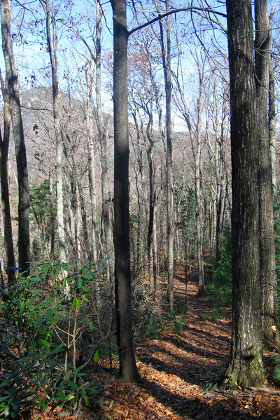 Little Table Rock Trail -- 3,000'