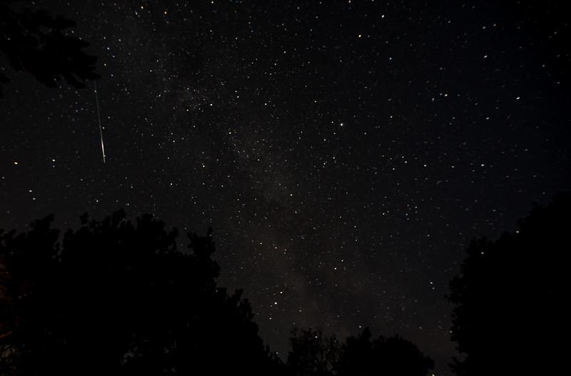 stjerner (3 of 5).jpg