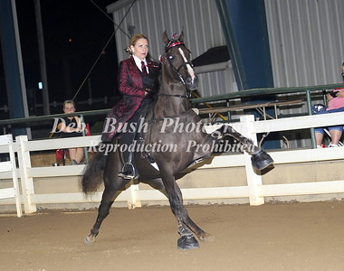 CLASS 47  AMATEUR SPECIALTY CHAMPIONSHIP