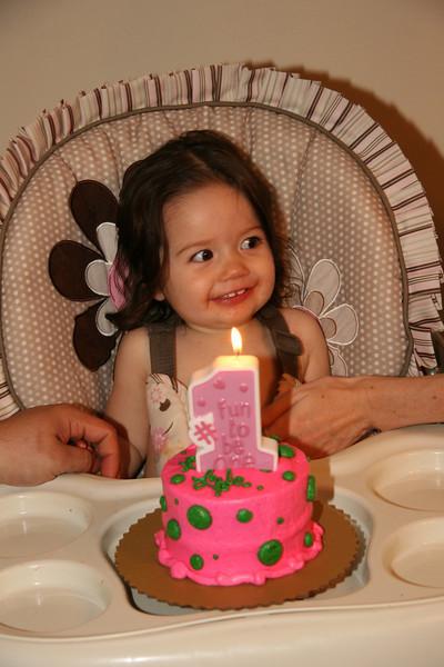 Lyla's First Birthday 2009