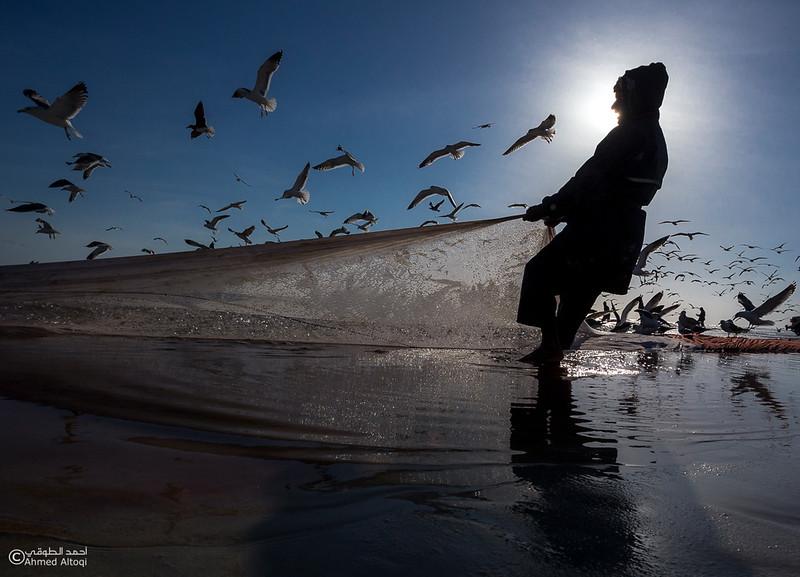 Sardine Season (18)- Dhofar.jpg
