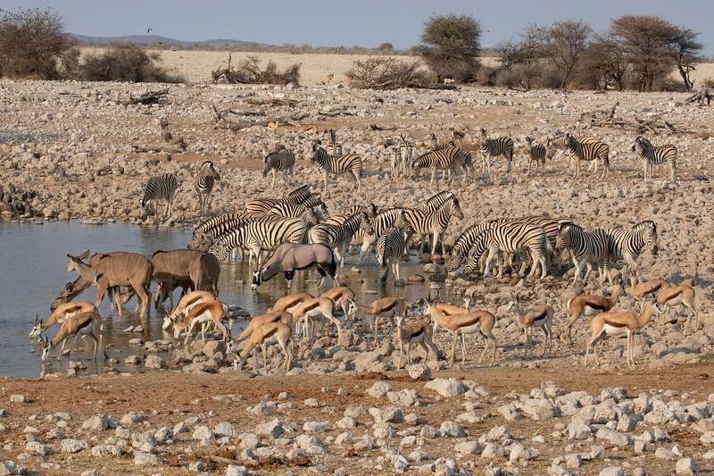 Namibia 69A7677.jpg
