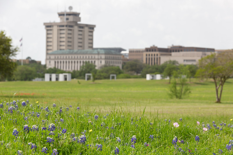 2019 Campus Bluebonnets_1645.jpg