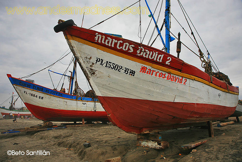 CHICLAYO 5D 0108 1-0206.JPG