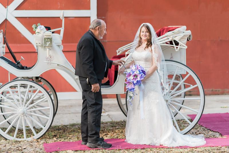 ELP0312 DeRoxtro Oak-K Farm Lakeland wedding-850.jpg