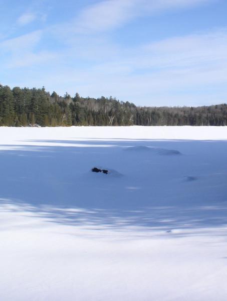 Ewell's Pond