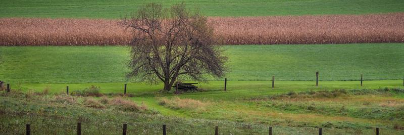 Barns of PA-301.jpg