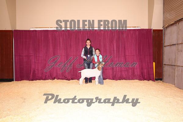 Backdrop Shots