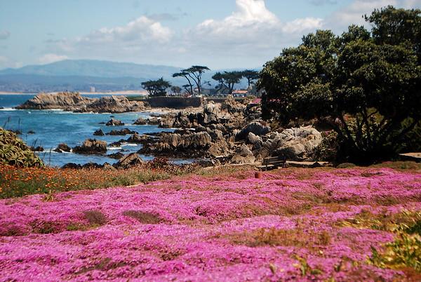 05-22-10 Monterey