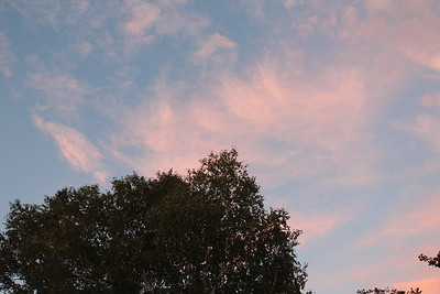 Sept 21st. late afternoon