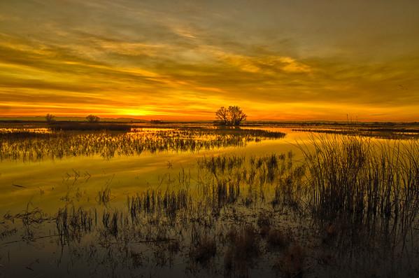 Merced National Wildlife Refuge