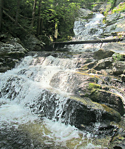 Many Trails to Lookout Ledge; Winneweta Falls (Aug. 2)