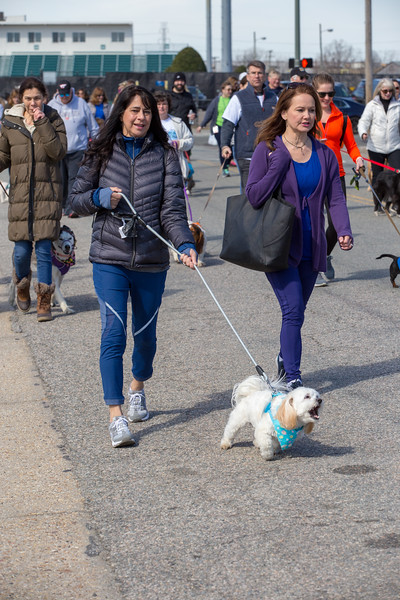 Richmond Spca Dog Jog 2018-761.jpg
