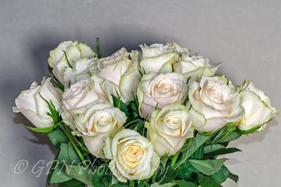 Indoor Flowers 2014