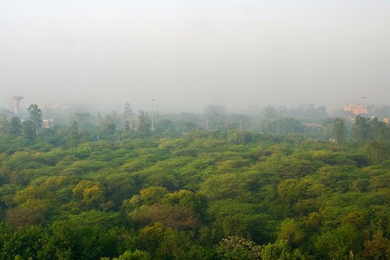 Delhi Park 1.jpg
