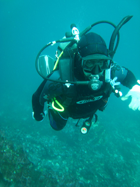 Diving in the Galapagos (263 of 392)