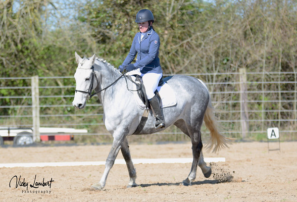Cheval Riding Club Dressage League - week 3