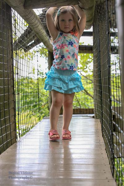2016-07-17 Fort Wayne Zoo 608LR.jpg