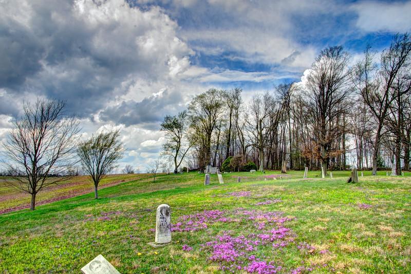 Forgetmenots-cemetery-hartville2.jpg