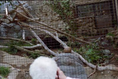010 - Zoo