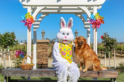 Campos Easter Bunny Pictures 4/20/2019