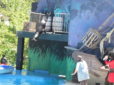 Discovery Kingdom, August 2010